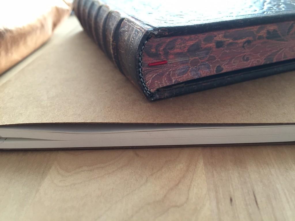 Die Seitenansicht des Paperblanks Notizbuchs Grolier