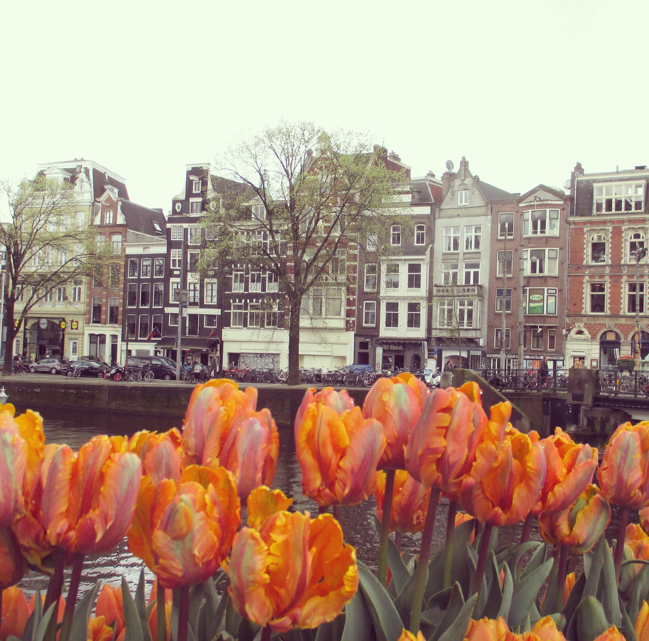 Holland Amsterdam schiefe Häuser
