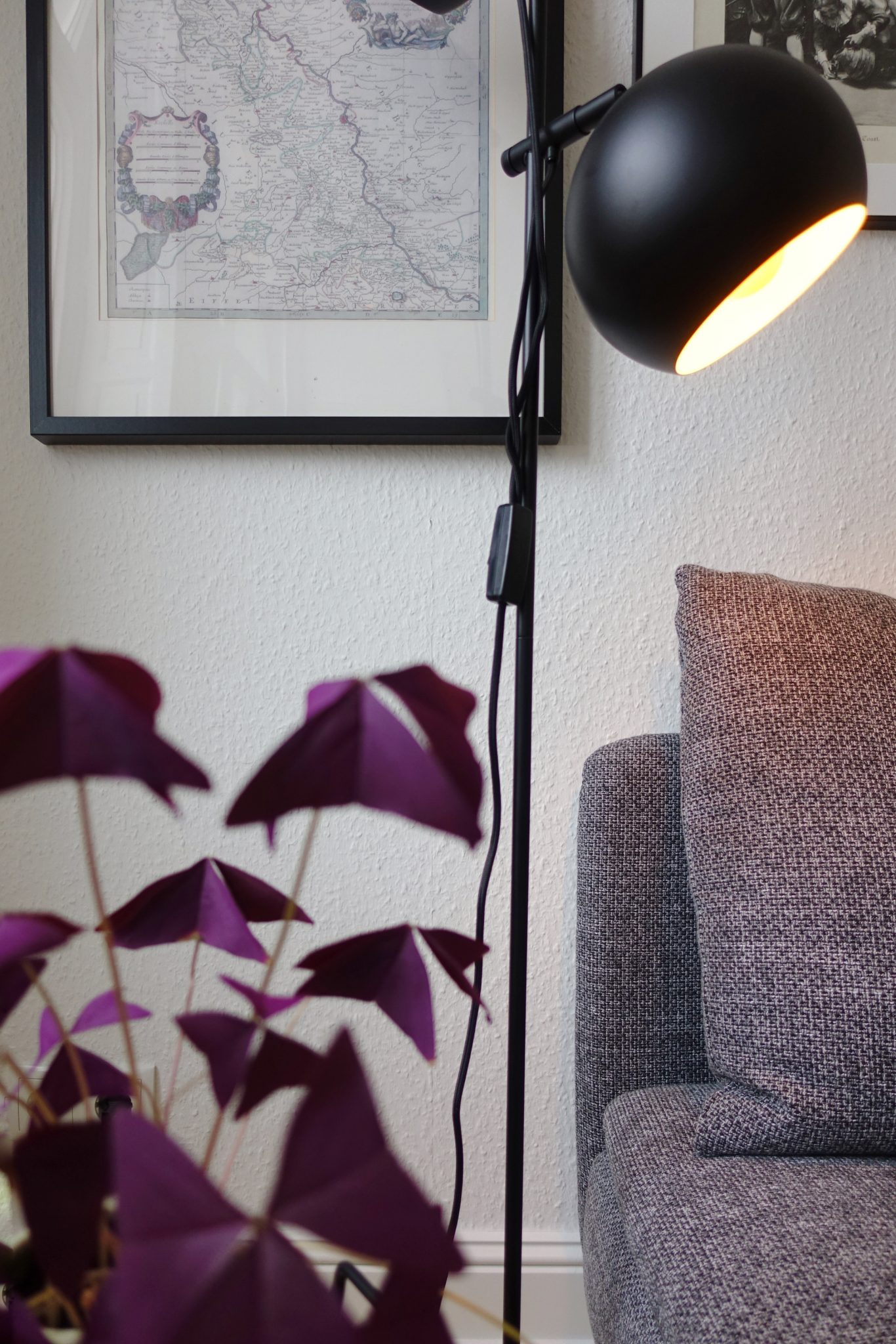 Stehlampe Frandsen mit Oxalis triangularis